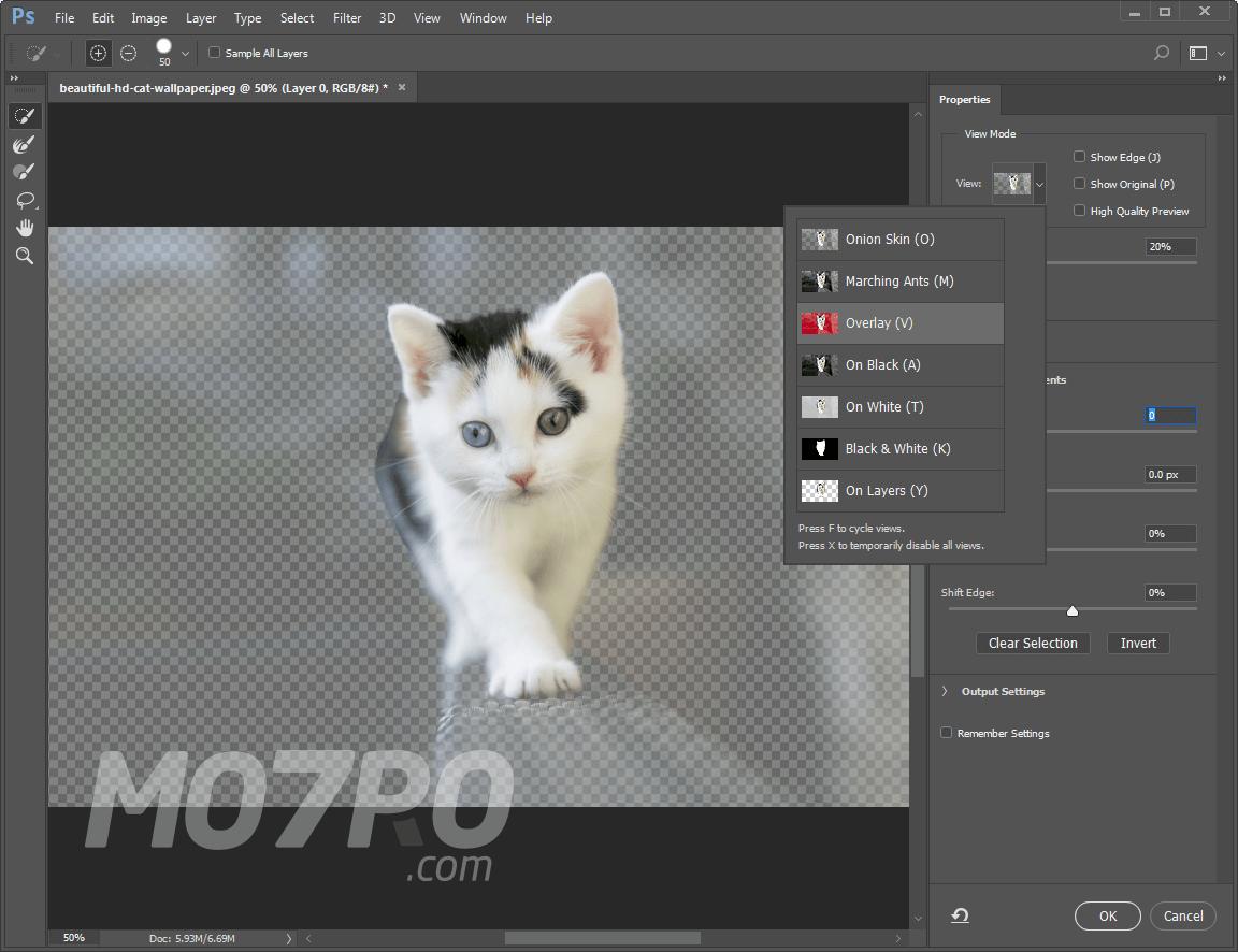 تحميل برنامج فوتوشوب Photoshop CC 19.0